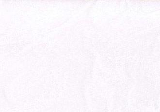 Corian - Culori - Private Color Chip Luna White