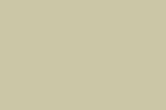 Corian - culori - New NobleEcru